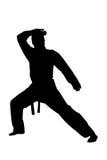 siluetta dell'uomo di arti marziali di karatè Fotografia Stock