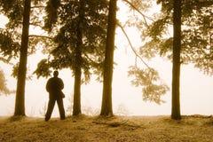 Siluetta dell'uomo in foresta Immagine Stock Libera da Diritti