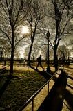 Siluetta dell'uomo fuori che cammina Fotografia Stock Libera da Diritti