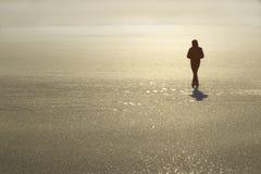 Siluetta dell'uomo su ghiaccio un il giorno di inverno luminoso e nebbioso Fotografia Stock Libera da Diritti