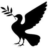 Siluetta della colomba con il ramo Fotografia Stock
