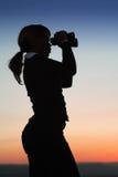 Siluetta della donna di affari Fotografie Stock Libere da Diritti