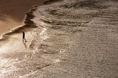 Siluetta della donna di camminata sola sulla spiaggia con la riflessione di luce solare Fotografie Stock