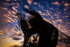 Siluetta della donna divertendosi al cielo di tramonto collega il volo con un manicotto che fring fotografie stock libere da diritti