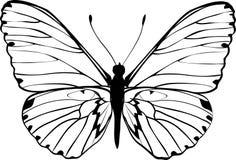 Siluetta della farfalla Fotografie Stock
