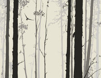 Siluetta della foresta decidua con un gufo 1 di volo Fotografia Stock