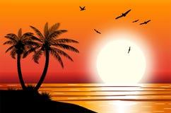 Siluetta della palma sulla spiaggia Fotografia Stock