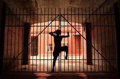 Siluetta della ragazza di dancing, lei che si arrampica sul latice Fotografie Stock