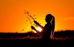 Siluetta della ragazza nel giacimento di grano immagini stock