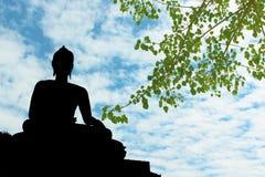 Siluetta della statua di Buddha con il fondo dell'albero di bho Fotografie Stock Libere da Diritti