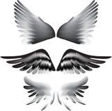 Siluetta delle ali  Immagine Stock
