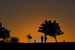 Siluetta delle coppie che stanno sotto un albero durante il tramonto Fotografia Stock Libera da Diritti