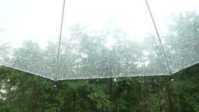 Siluetta delle gocce di pioggia su un ombrello trasparente, vista da sotto l'ombrello sugli alberi verdi nella pioggia 4k, lento video d archivio