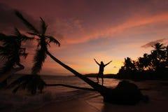 Siluetta delle palme ad alba, spiaggia di Las Galeras Fotografie Stock