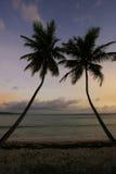 Siluetta delle palme ad alba, spiaggia di Las Galeras Fotografia Stock Libera da Diritti
