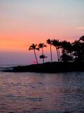 Siluetta delle palme al tramonto Hawai fotografia stock