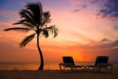 Siluetta delle palme alla spiaggia tropicale di tramonto Tramonto arancione Immagini Stock Libere da Diritti