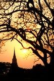 Siluetta delle scene crepuscolari della pagoda nel parco storico di Ayutthaya Fotografia Stock