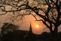 Siluetta delle scene crepuscolari della pagoda nel parco storico di Ayutthaya Fotografie Stock Libere da Diritti