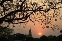 Siluetta delle scene crepuscolari della pagoda nel parco storico di Ayutthaya Fotografia Stock Libera da Diritti