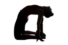 Siluetta di allungamento della donna sulle ginocchia Immagini Stock