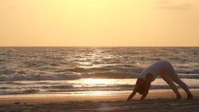 Siluetta di bella donna di yoga stock footage