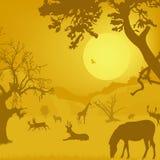 Siluetta di fauna selvatica, animali, alberi, sole Immagine Stock Libera da Diritti