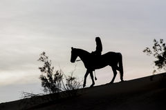 Siluetta di giovane Rider And Her Horse femminile Immagine Stock Libera da Diritti