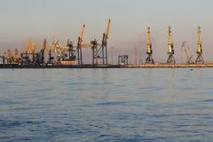 Siluetta di molte grande gru nel porto a luce dorata del tramonto Mariupol, Ucraina Fotografie Stock Libere da Diritti