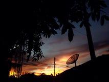 Siluetta di penombra di tramonto Immagine Stock