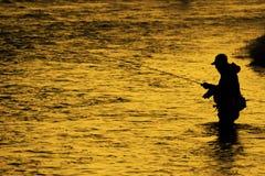 Siluetta di pesca di pesca con la mosca dell'uomo alla luce solare dorata del fiume Fotografia Stock