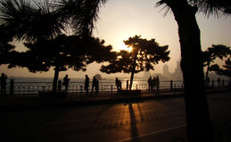 Siluetta di Qingdao Fotografia Stock Libera da Diritti