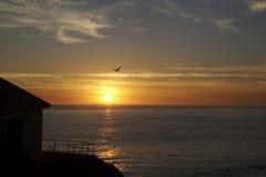 Siluetta di tramonto Fotografia Stock