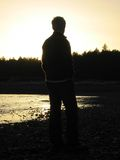 Siluetta di tramonto Immagini Stock