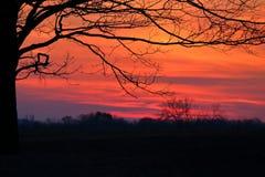 Siluetta di tramonto di inverno Immagine Stock
