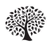 Siluetta di un albero Fotografia Stock