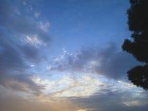 Siluetta di un albero con un cielo magnifico fotografia stock