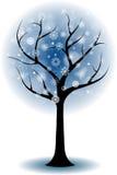 Siluetta di un albero in inverno Fotografia Stock Libera da Diritti
