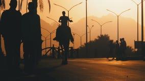 Siluetta di un beduino su un cammello che entra lungo la strada nel tramonto Egypt Movimento lento video d archivio