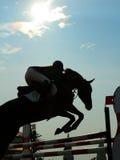 Siluetta di un cavallo Immagini Stock
