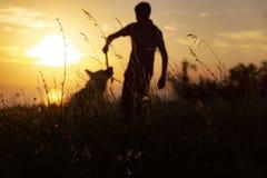 Siluetta di un giovane che gioca con un cane in un campo al tramonto, ragazzo che getta un bastone di legno e che risolve con l'a immagini stock