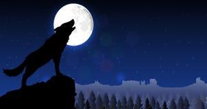 Siluetta di un lupo che sta su una collina alla notte Fotografia Stock Libera da Diritti