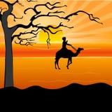 Siluetta di un uomo sul cammello Immagini Stock Libere da Diritti
