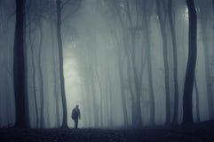 Siluetta di un uomo in una foresta nebbiosa immagine stock