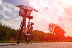 Siluetta di una bici nella foresta al tramonto Bicicletta e concetto di ecologia fotografia stock libera da diritti