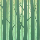 Siluetta di una foresta ad alba, alberi verde chiaro di estate e della primavera nei precedenti illustrazione vettoriale