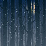 Siluetta di una foresta alla notte, alberi di inverno di luce della luna nei precedenti illustrazione vettoriale