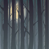 Siluetta di una foresta alla notte, alberi di inverno di luce della luna nei precedenti Fondo per la cartolina d'auguri e gli inv illustrazione vettoriale