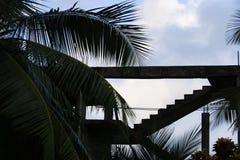 Siluetta di una scala di costruzione e di foglie di palma non finite Immagine Stock