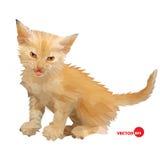 Siluetta di vettore del gatto sui precedenti bianchi isolati, fatto nel poli stile basso Piccolo gatto del bambino con uno sguard Fotografia Stock